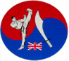 Saracens Martial Arts